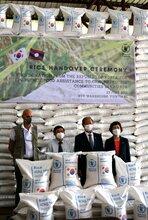 대한민국 쌀 덕분에 WFP 라오스 비상 식량 비축량 확대